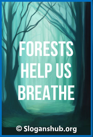 Save forest Slogans. Forests help us breathe