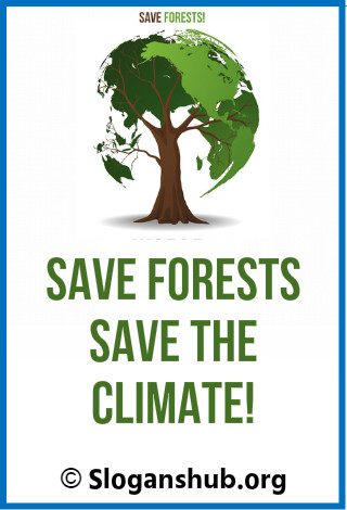 Save forest Slogans. Save forests, save the climate!