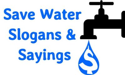 Save water slogans & sayings