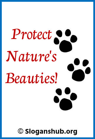 Save Animal Slogans. Protect natures beauties!