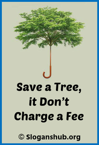 Save Tree Slogans. Save a tree, it don't charge a fee