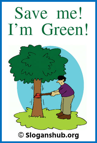 Save Tree Slogans. Save me! I m Green!