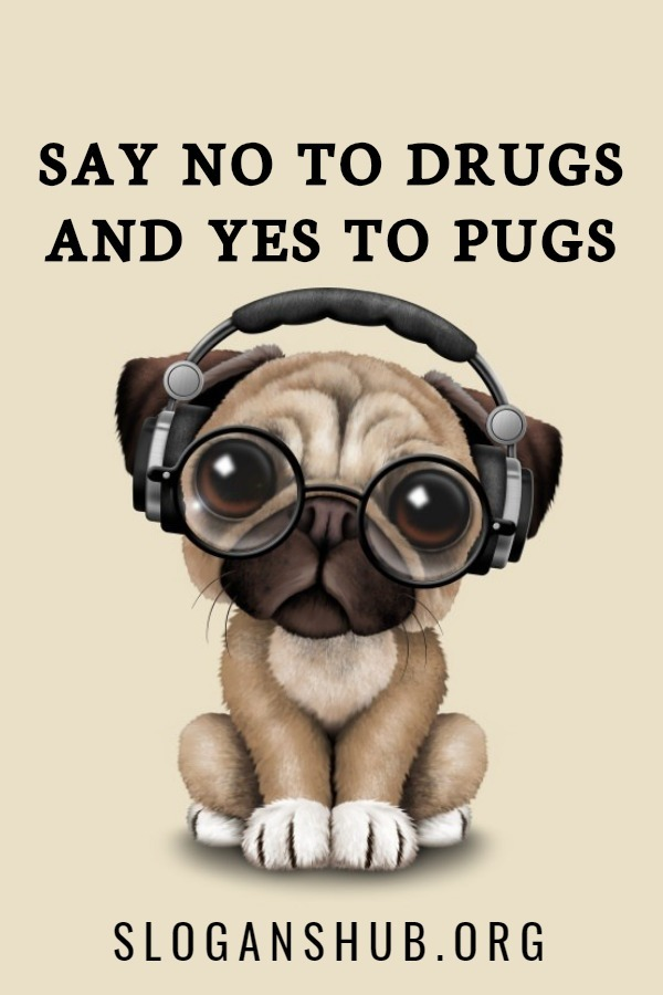 Say no to Drugs Posters. Say no to drugs and yes to pugs