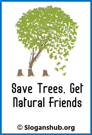 Slogans on Save Trees. Save trees, get natural friends