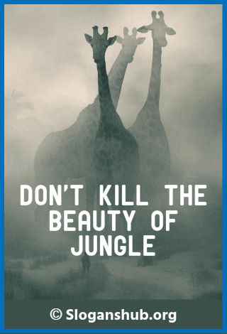 Animal Abuse Slogans. Dont kill the beauty of jungle