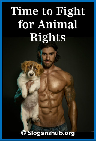 Animal Rights Slogans. Time to fight for animal rights