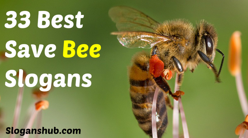 Save Bee Slogans