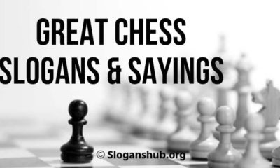 Great Chess Slogans