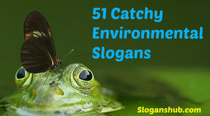 51 Catchy Slogans on Environment