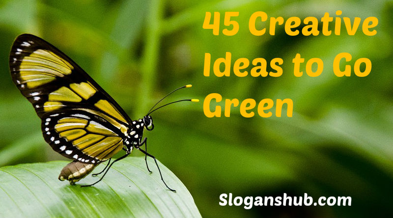 Ideas to Go Green