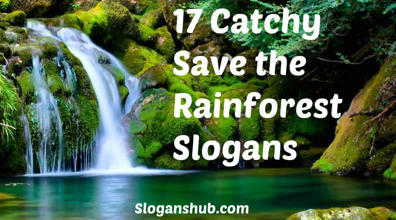 Save the Rainforest Slogans