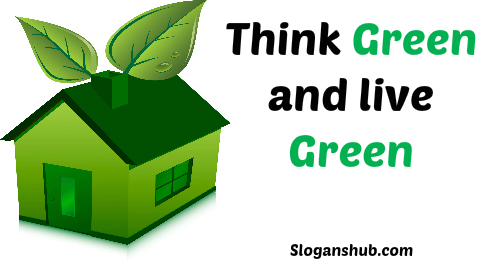 college essay examples pdf Live Green, Love Green, Think Green!