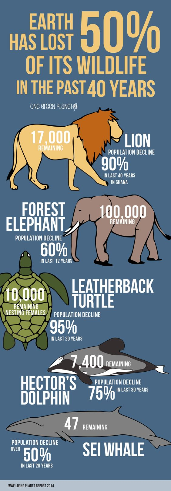 wildlife-facts.jpg