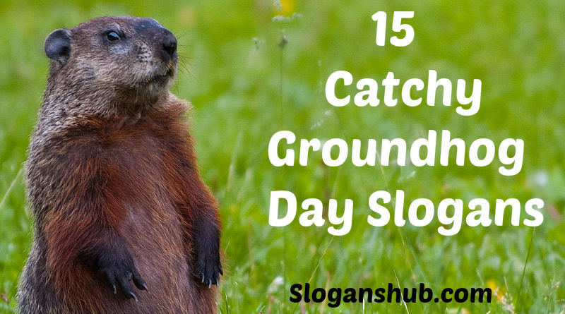 Groundhog's Day Slogans