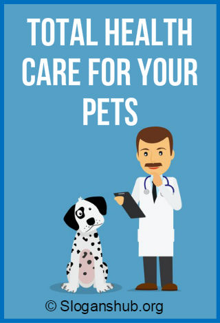 Veterinary Slogans