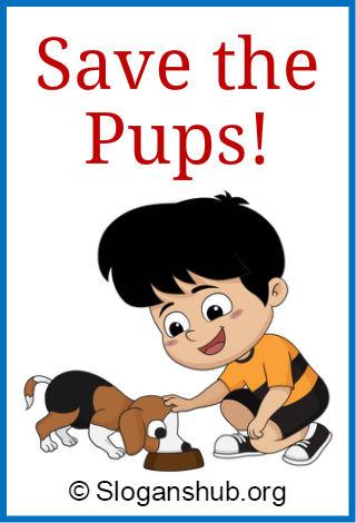 Dog Slogans 2