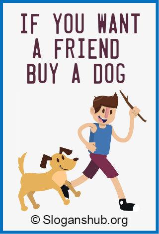 Dog Slogans 4