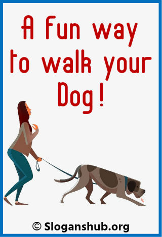 Dog Walking Slogans