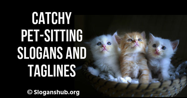 Pet-Sitting Slogans and Taglines