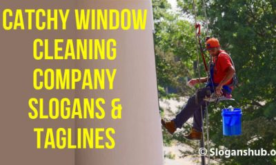 Window Cleaning Company Slogans & Taglines