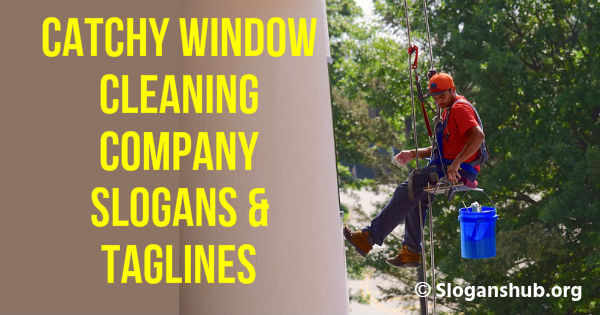 57 Catchy Window Cleaning Company Slogans