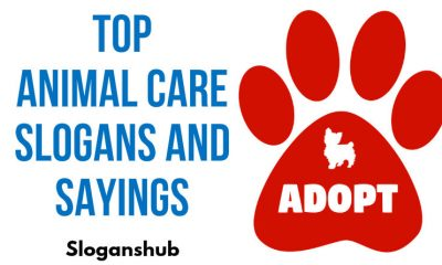 Animal Care Slogans and Sayings