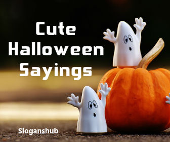 100 cute spooky and funny halloween sayings