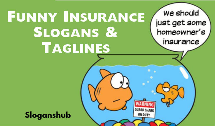 Top 65 Funny Insurance Slogans Taglines