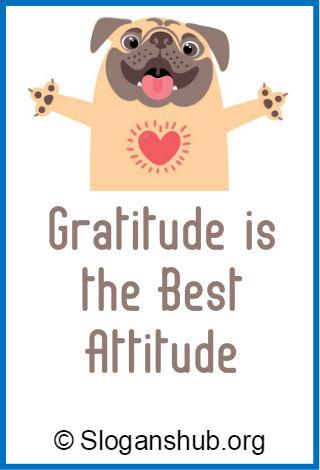 Gratitude Slogans
