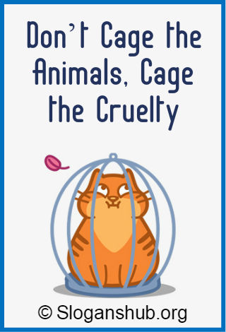 Animal Rights Slogans 3