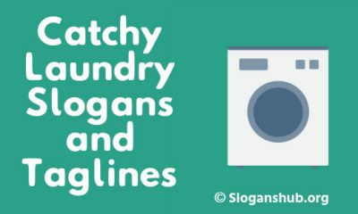 Laundry Slogans and Taglines