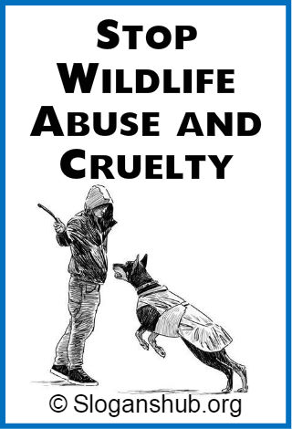 Save Wildlife Slogans 2