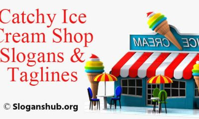 Ice Cream Shop Slogans & Taglines