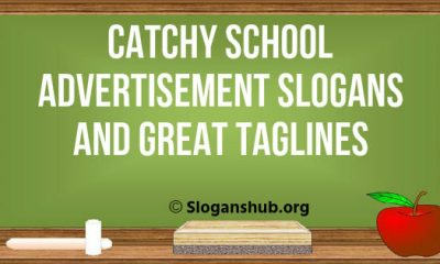 School Advertisement Slogans And Great Taglines
