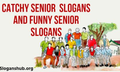 Senior Slogans and Funny Senior Slogans