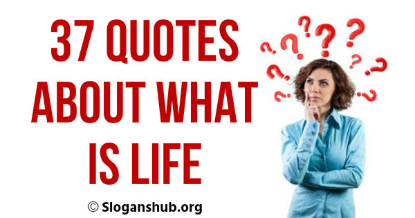 37 Quotes About What is Life