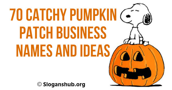 Pumpkin Patch Business Names and Ideas