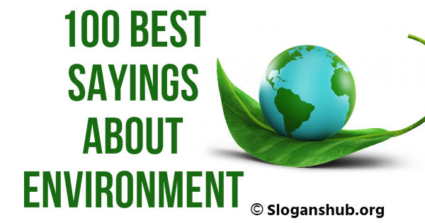 Sayings About Environment