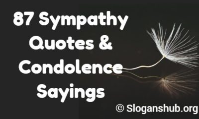 Sympathy Quotes & Condolence Sayings